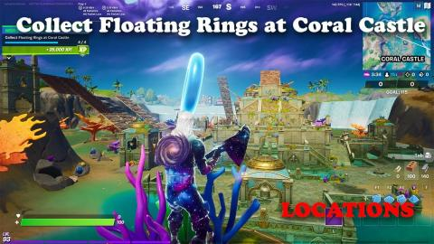 Collect Floating Rings at Coral Castle - LOCATIONS