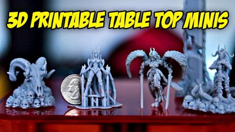 Hell Hath No Fury   3D Printable Table Top Minis   Zortrax Inkspire