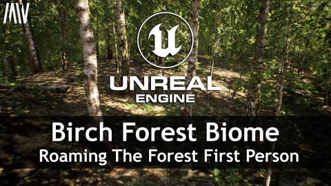 MAWI Birch Forest Biome | Unreal Engine | Roaming The Forest First Person
