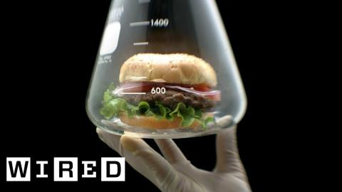 How Meat is Grown in a Lab | WIRED