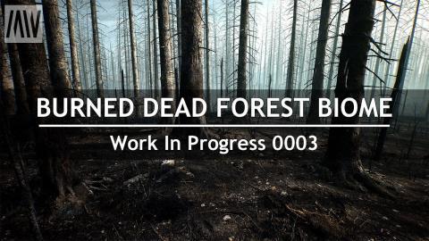 MAWI BurnedDeadForest WIP 0003