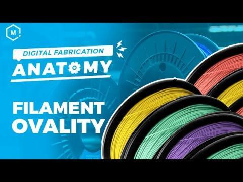 Digital Fabrication Anatomy // Importance of Ovality