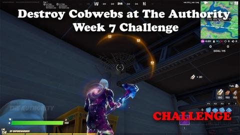 Destroy Cobwebs at The Authority - Week 7 Challenge