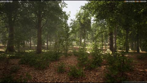 MAWI UE4 BroadleafForest Update3 02