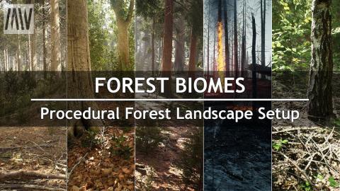 MAWI Tutorial - Forest Biomes | Procedural Forest Landscape Setup