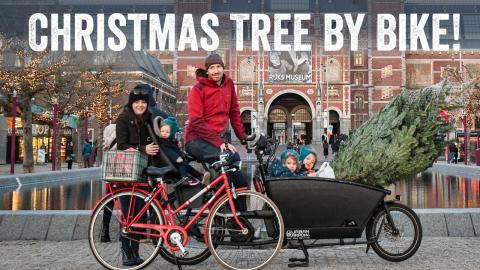 Getting our Christmas Tree by Bike in Amsterdam
