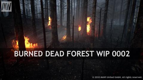 MAWI BurnedDeadForest WIP 0002